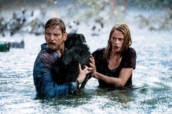 Climate-Change-in-Horror-Movies-GQ-2019-070819