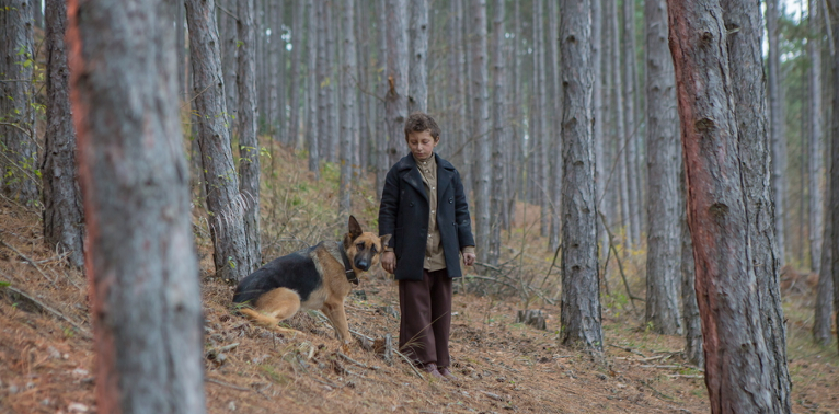 A young boy wearing 1940s clothing stands in a forest. He is walking with a shy-looking German Shepard dog.