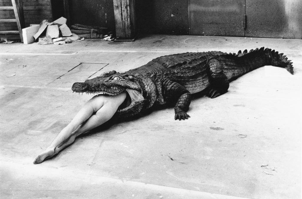 A photograph from Helmut Newton. It shows a nude woman crawling inside a alligator (clearly not real) so that you can only see her bare bum sticking out from its mouth. The image is in black and white