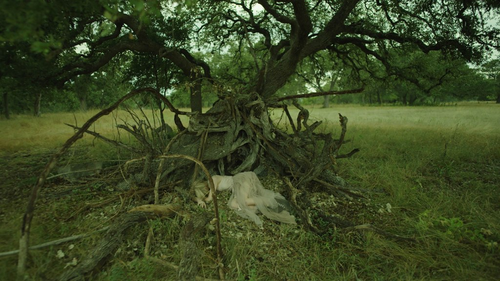 Carlson Young in The Blazing World. Margaret, in her white dress, lies curled up at the base of a tree in a field. The tree's roots have been torn up and twist into the air in all directions.