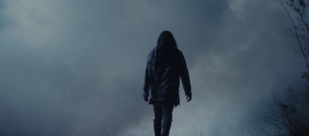 A lone female figure stands with her back to camera, walking into the mist. Her clothes are barely visible in the dim light - empty branches creep into the frame on the right hand side.